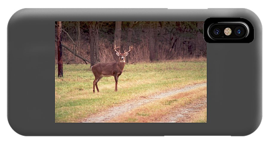 Deer IPhone X Case featuring the photograph 070506-17 by Mike Davis