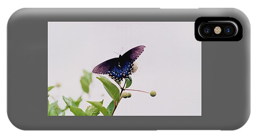 Butterfly IPhone X Case featuring the photograph 080706-5 by Mike Davis