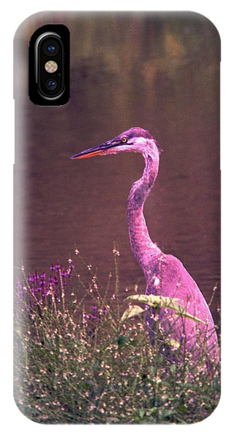 Great Blue Heron IPhone X Case featuring the photograph 080706-12 by Mike Davis