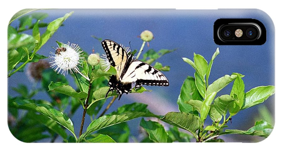 Butterfly IPhone Case featuring the photograph 080706-7 by Mike Davis