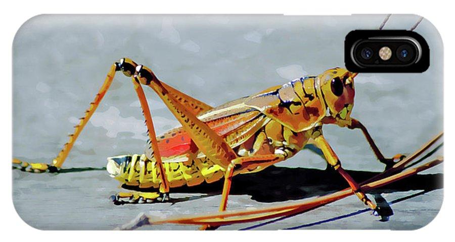 Lubber Grasshopper IPhone X Case featuring the digital art 15- Lubber Grasshopper by Joseph Keane