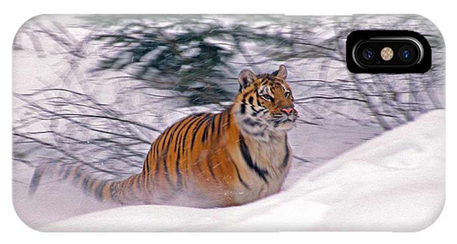 Tiger IPhone X Case featuring the photograph A Blur Of Tiger by Michele Burgess