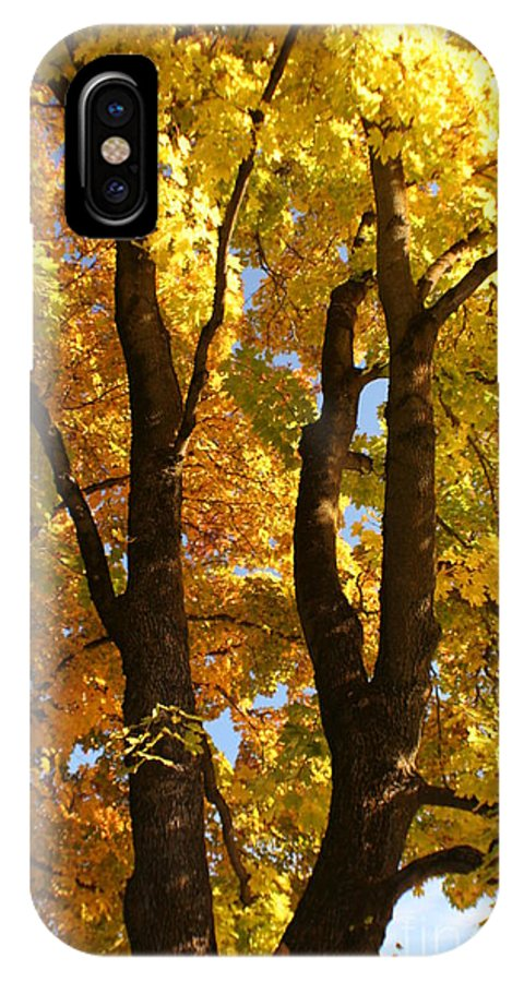 Achieve IPhone X Case featuring the photograph Achievement by Idaho Scenic Images Linda Lantzy