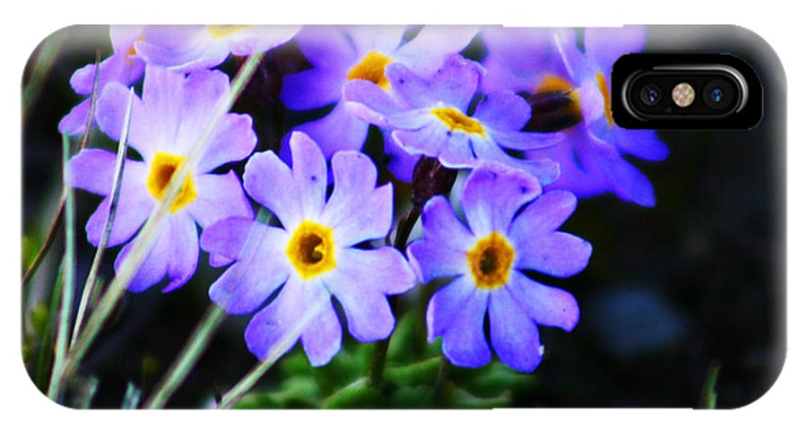 Flowers IPhone X Case featuring the photograph Alaskan Wild Flowers by Anthony Jones