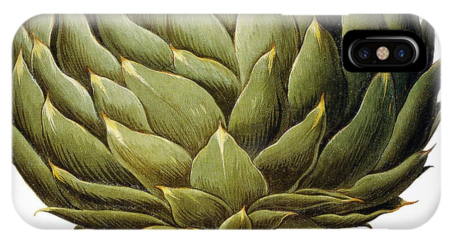 1613 IPhone X Case featuring the drawing Artichoke, 1613 by Granger