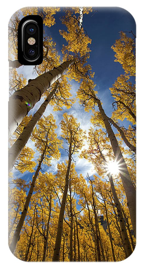 Autumn IPhone X Case featuring the photograph Autumn Aspens by Sue Cullumber