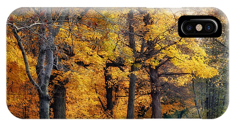Autumn IPhone X Case featuring the photograph Autumn By The River by Jessica Jenney