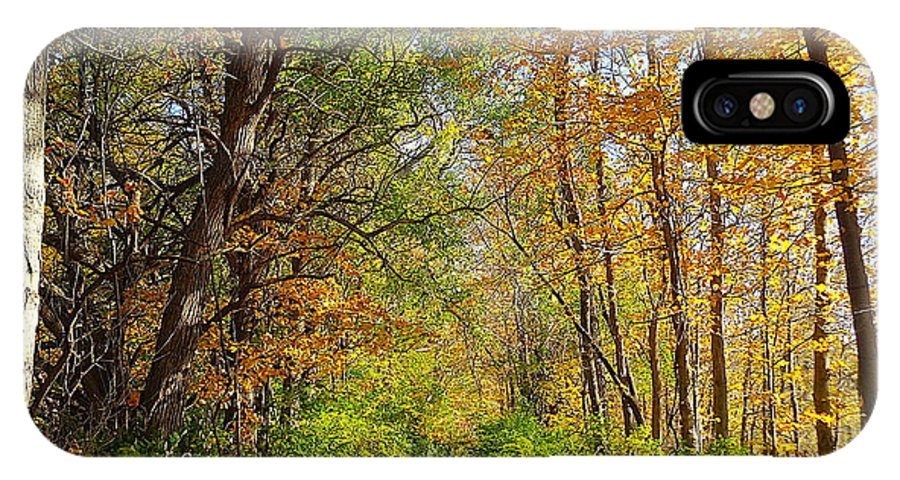 Autumn IPhone X Case featuring the photograph Autumn In The Park by Wendy Yee