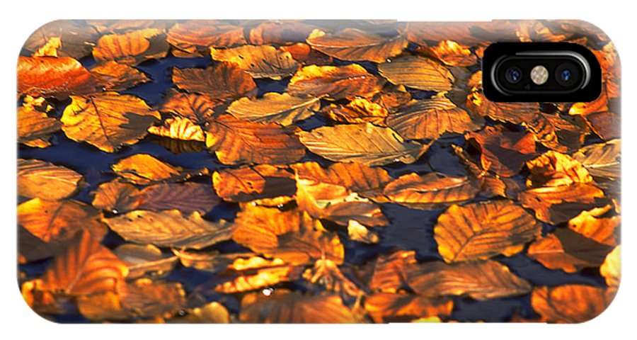 Leaves IPhone X Case featuring the photograph Autumn Leaves by Michael Mogensen