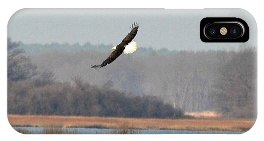 Eagles IPhone X Case featuring the photograph Bald Eagle In Flight by Jo-Ann Matthews