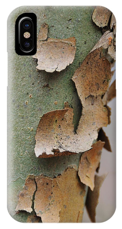 Tree IPhone X Case featuring the photograph Bark by David Arment