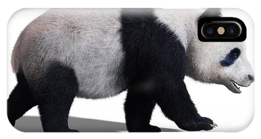 Bear IPhone X Case featuring the digital art Bear Panda Walking by Martin Cvetkov