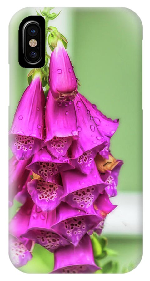 Foxgloves IPhone X / XS Case featuring the photograph Bells Of Spring by Ola Allen
