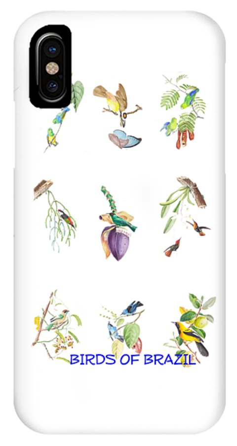 Tropical IPhone X Case featuring the painting Birds Of Brazil by Philip Ralley