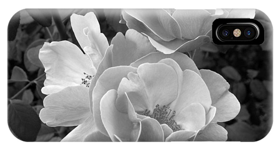 Rose IPhone X Case featuring the photograph Black And White Roses 2 by Amy Fose
