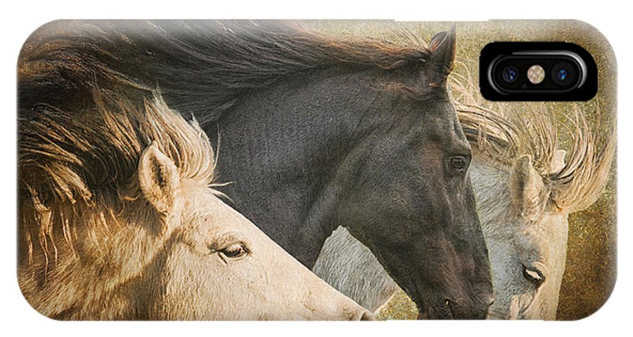 Equine IPhone X Case featuring the photograph Brings The Thunder by Ron McGinnis