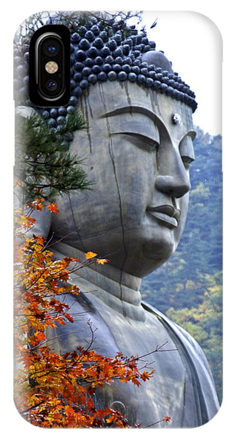 Buddha IPhone X Case featuring the photograph Buddha In Autumn by Michele Burgess