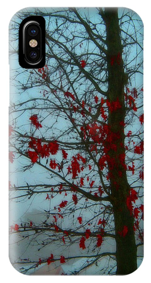 Tree Winter Nature IPhone X Case featuring the photograph Cold Day In Winter by Linda Sannuti