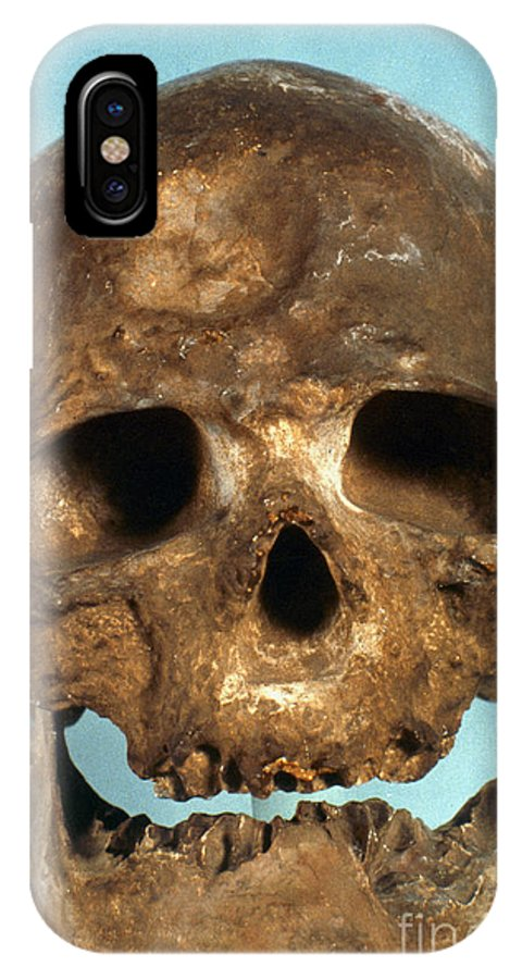 Artifact IPhone X Case featuring the photograph Cro-magnon Skull by Granger