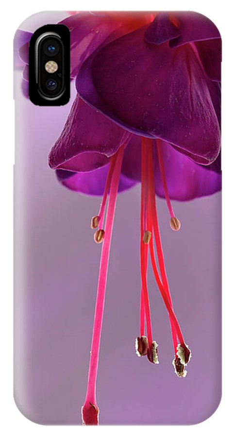 Flora IPhone X Case featuring the photograph Dance Of The Fuschia by Shirley Mitchell