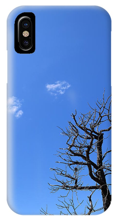 Tree IPhone X Case featuring the photograph Dead Tree And Two Clouds by Mary Bedy