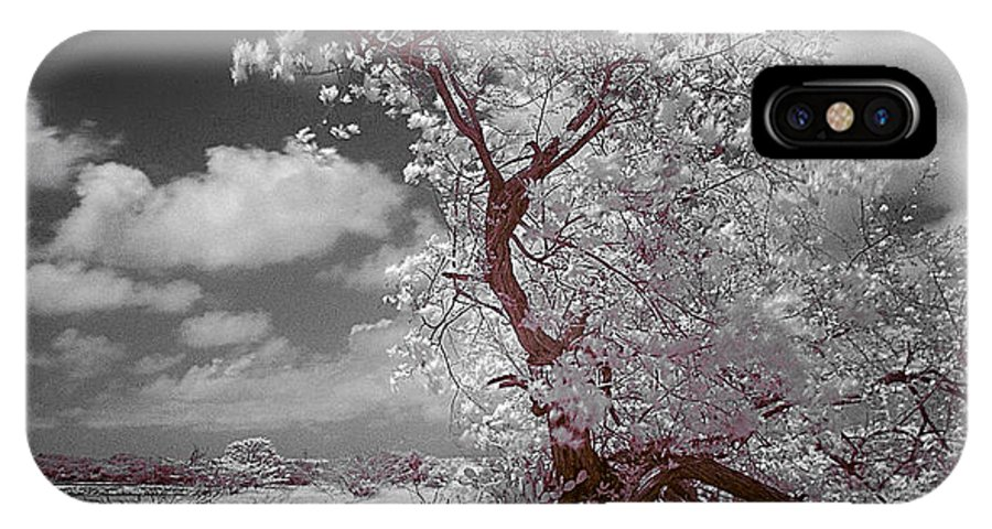 Infrared IPhone X Case featuring the photograph Desertic Tree by Galeria Trompiz