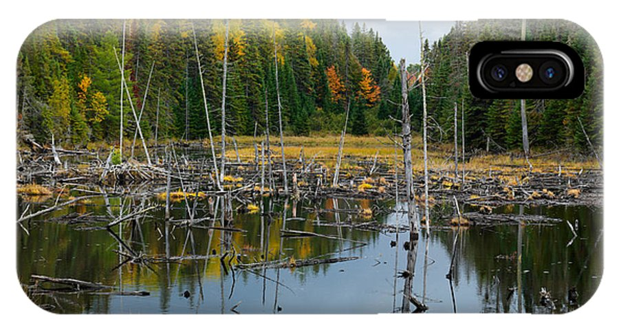 Drowned Trees IPhone X Case featuring the photograph Drowned Trees by Oleksiy Maksymenko