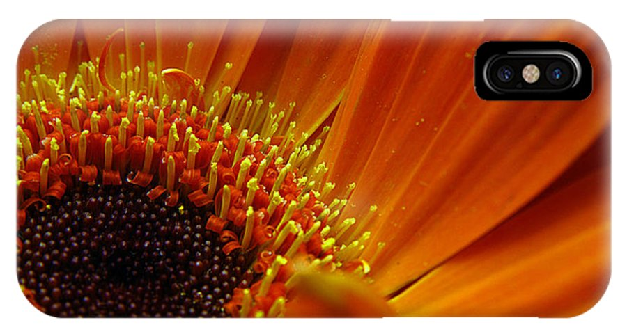 Clay IPhone Case featuring the photograph Floral by Clayton Bruster