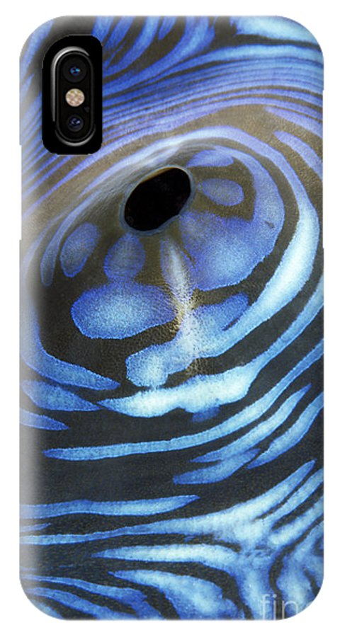 30-csm0041 IPhone X Case featuring the photograph Giant Tridacna Clam by Dave Fleetham - Printscapes