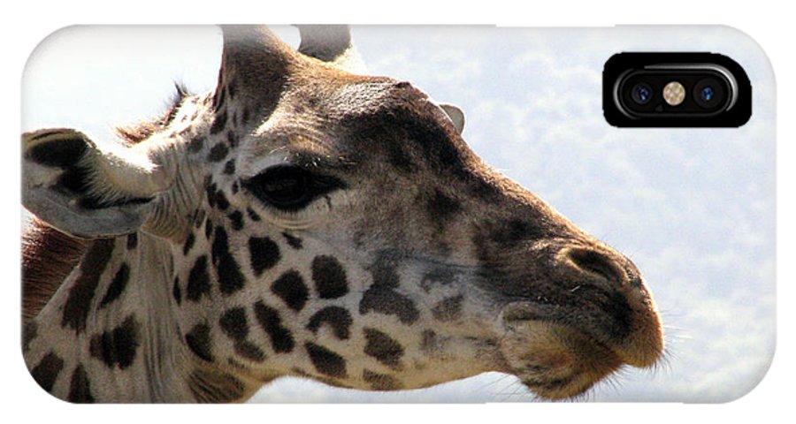 Giraffe Close Up Africa Tanzania IPhone X Case featuring the photograph Giraffe by Diane Barone