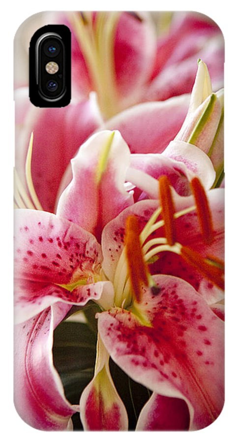Flora IPhone X Case featuring the photograph Graceful Lily Series 15 by Olga Smith