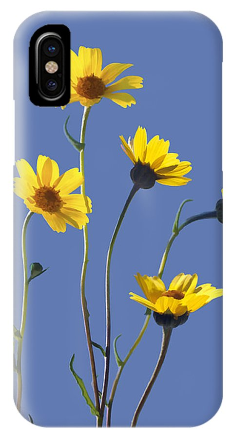 Daisy IPhone X Case featuring the digital art Happy Daisies II by Sharon Foster
