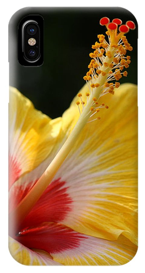 Flower IPhone X Case featuring the photograph Hibiscus by Paul Slebodnick