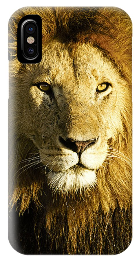 Lion IPhone X Case featuring the photograph His Royal Highness by Michele Burgess