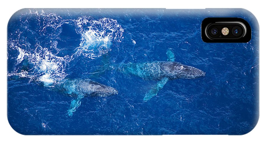 Above IPhone X Case featuring the photograph Humpback Whales Aerial by Ron Dahlquist - Printscapes