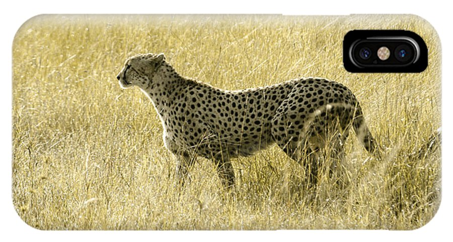 Africa IPhone X Case featuring the photograph Hunting Cheetah by Michele Burgess
