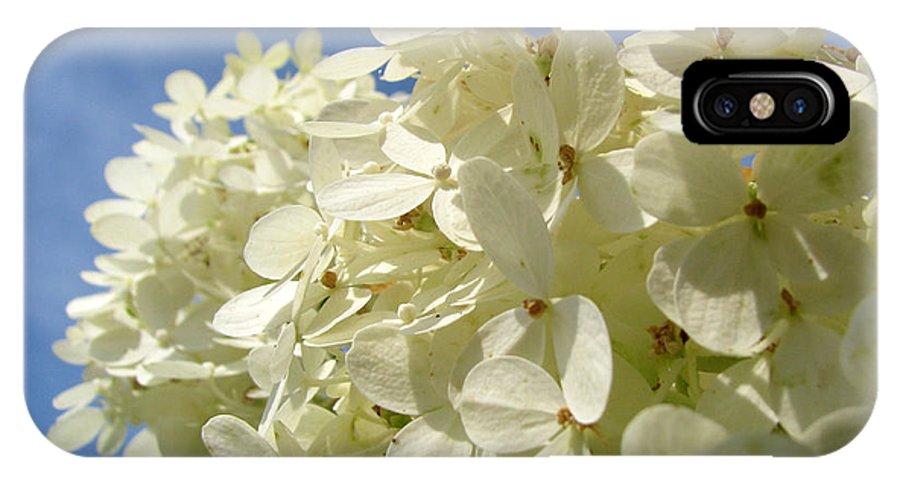 Hydranga IPhone X Case featuring the photograph Hydrangea by Amanda Barcon