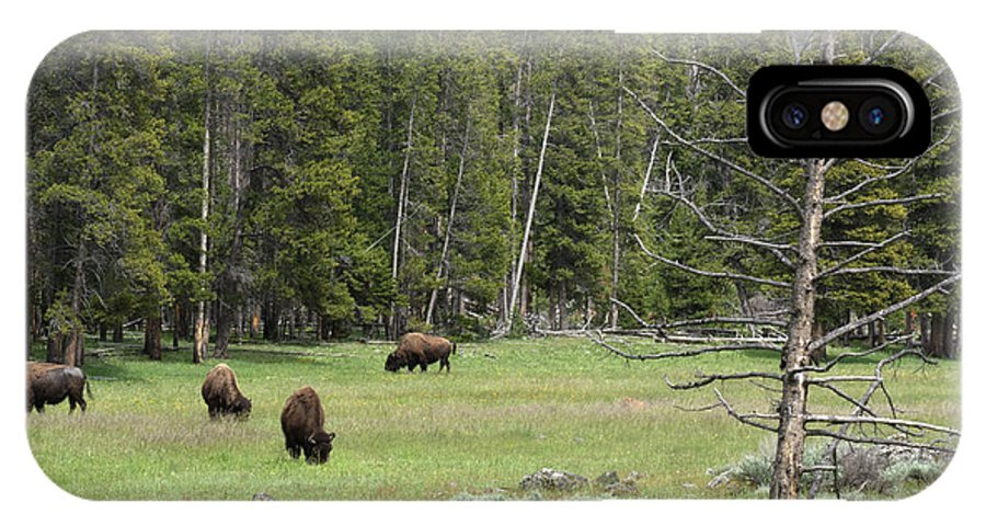Yellowstone National Park IPhone X Case featuring the photograph In A Field by Linda Kerkau