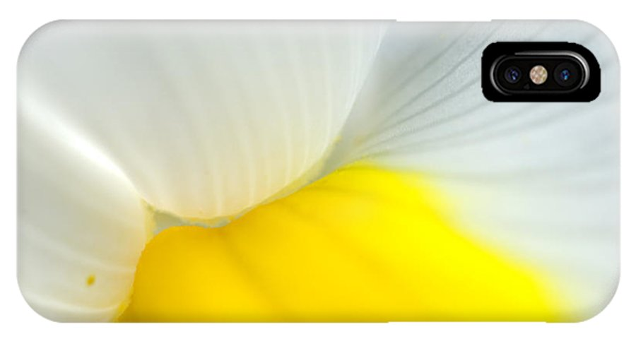 Iris IPhone X Case featuring the photograph Iris by Silke Magino