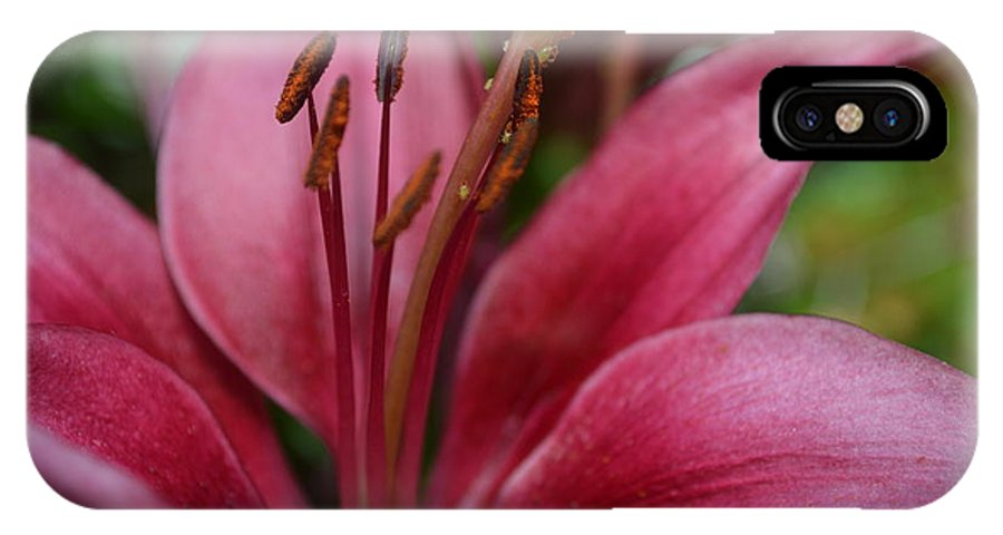 Lilys IPhone X Case featuring the photograph Lily 1 by Brad Kennedy