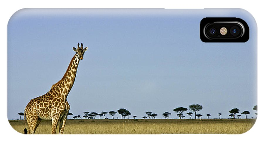 Africa IPhone X Case featuring the photograph Majestic Giraffe by Michele Burgess