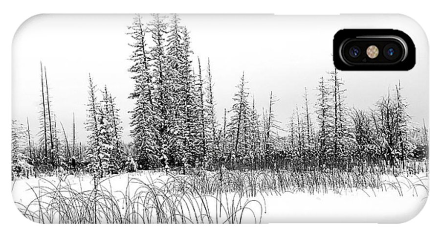Winter IPhone X / XS Case featuring the photograph Misty Reeds by Roland Stanke
