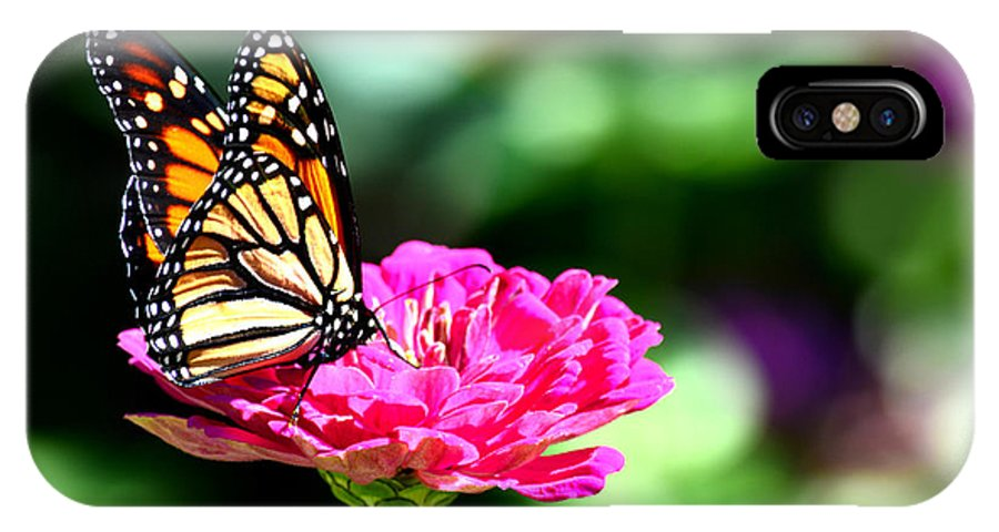 Monarch IPhone X Case featuring the photograph Monarch Butterfly On Pink Flower by Reva Steenbergen