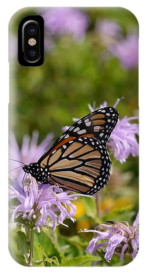 Tiwago IPhone X Case featuring the photograph Monarch by Photography by Tiwago
