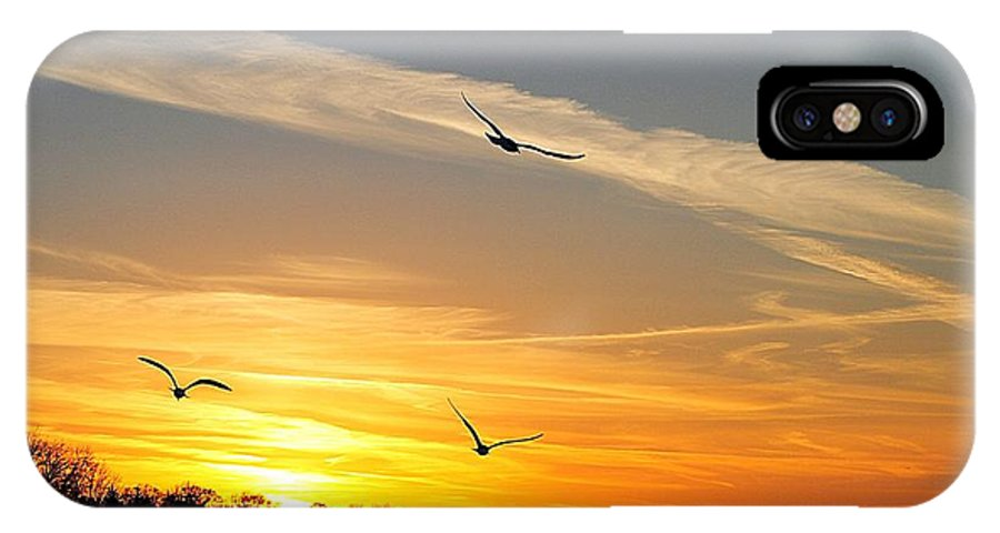 Lake IPhone X Case featuring the photograph November Sunset by Frozen in Time Fine Art Photography