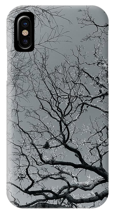 Trees IPhone X Case featuring the photograph oak by Julian Grant