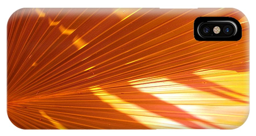 Abstract IPhone X Case featuring the photograph Orang I Pretty by Florene Welebny
