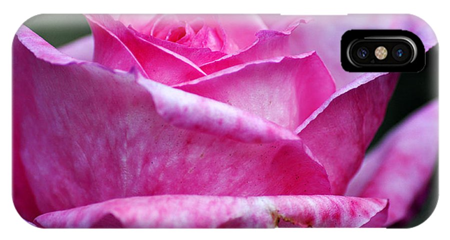 Clay IPhone X Case featuring the photograph Pink Rose by Clayton Bruster