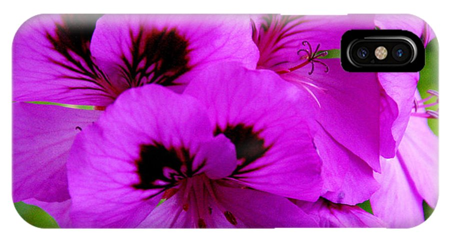 Purple Flowers IPhone X Case featuring the photograph Purple Flowers by Anthony Jones