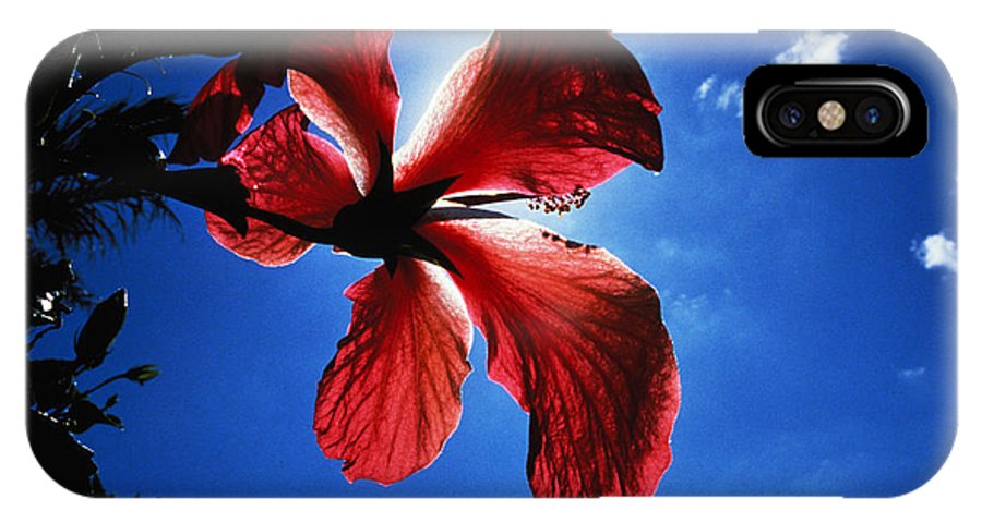 Sunlight IPhone X Case featuring the photograph Red Hibiscus by Carl Purcell